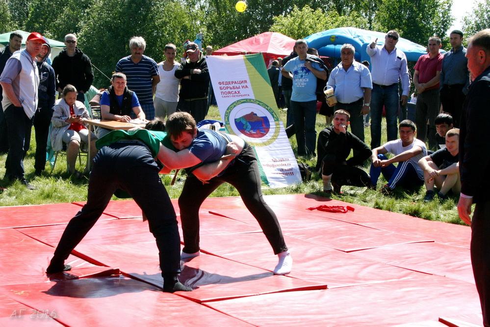 Борьба на поясах «Коряш» на Тосненском Сабантуе, 04.06.2016