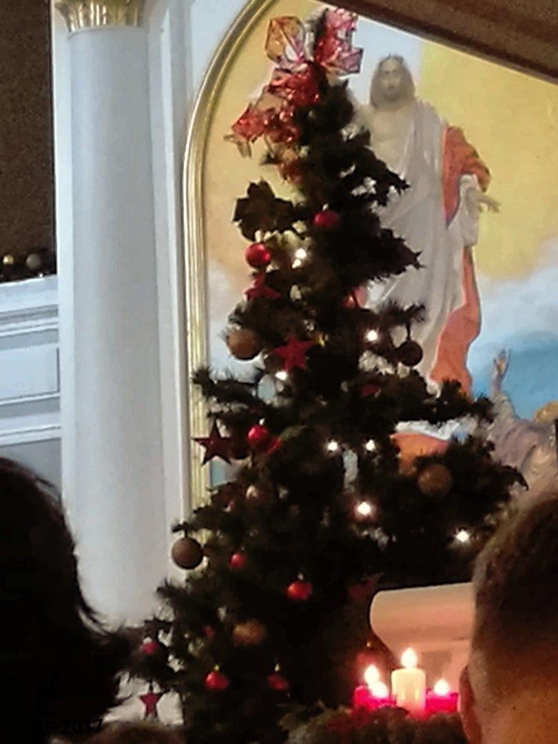 Сочельник, Лютеранская Церковь св. Марии (ЕЛЦИ), «Рождественский марафон», со студентами РГПУ им. А.И. Герцена, 24.12.2017.